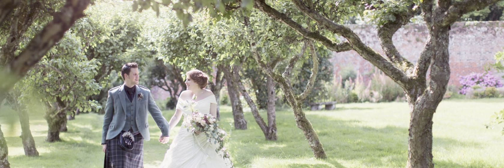 Walk down the aisle of ancient apple trees